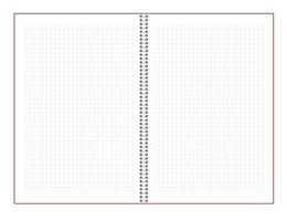 Записная книжка 9x13 см Freenote в клетку, на пружине